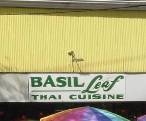 Basil Leaf-New-Orleans